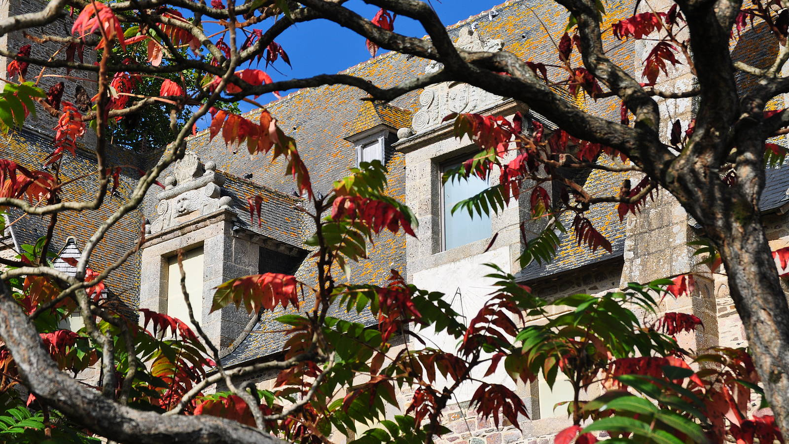 Architecte Cotes D Armor abbaye de beauport - discover the abbey and its grounds